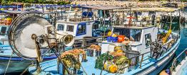 Foto de um barco azul equipado com redes de pesca. Está atracado num porto com outros barcos.