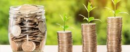 Imagem de um pote de vidro com moedas dentro. Ao lado, fotomontagem de três pilhas de moedas com um ramo de folhas brotando do topo.